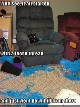 Funny-pictures-cat-has-unraveled-all-your-thread